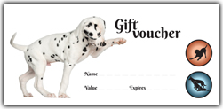 Alpha PlayCare Gift Vouchers